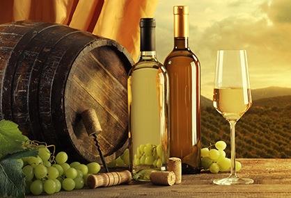 Vinarstvo i vinogradarstvo