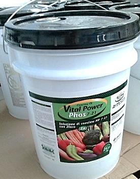 VITAL power phos 1/1 l
